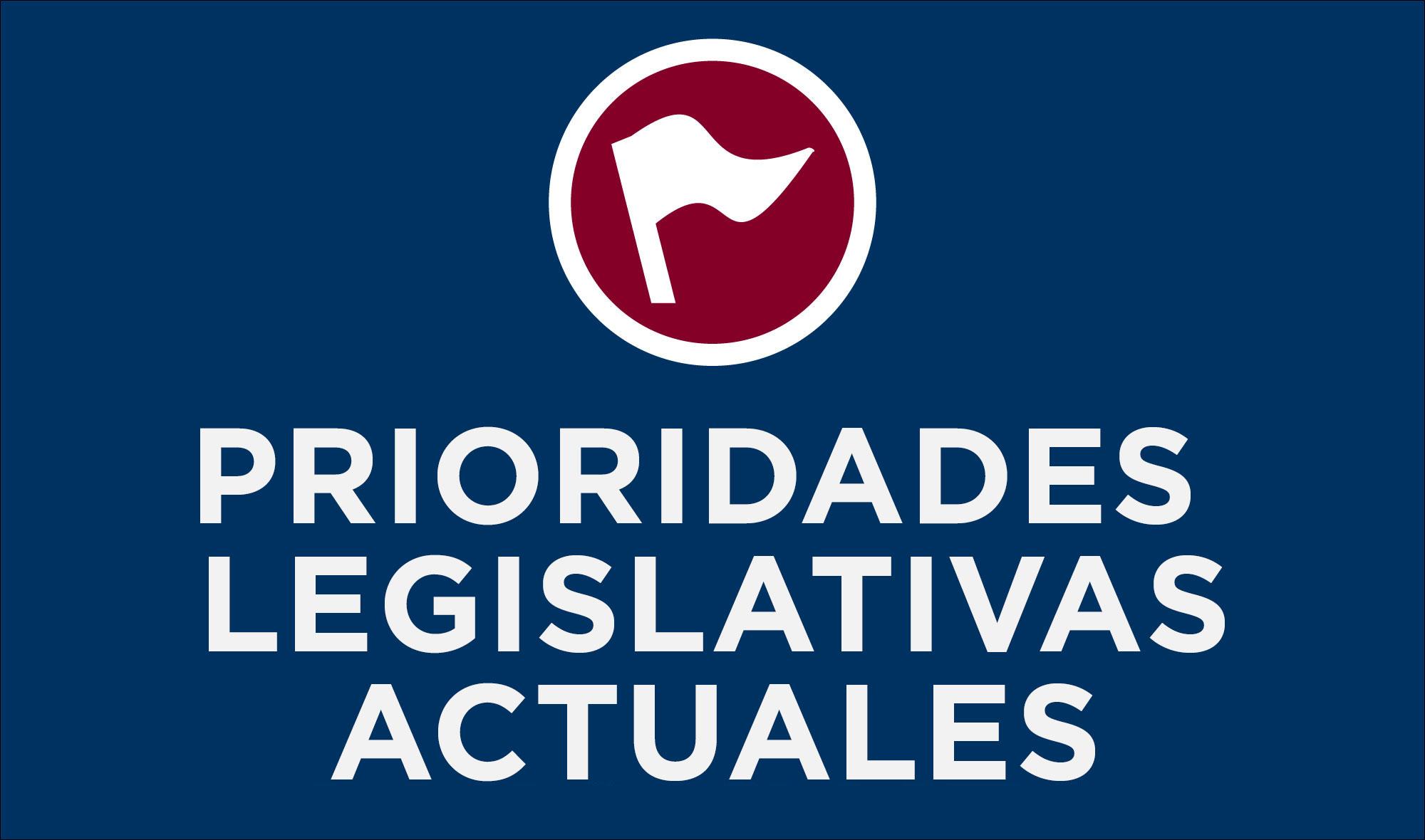 Prioridades legislativas actuales
